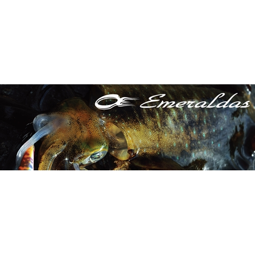 Daiwa - Emeraldas - Spinning Rods | Eastackle