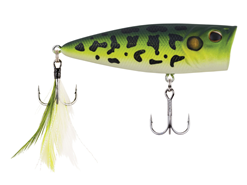 Berkley - Bullet Pop 80 - MF FROG - Floating Popper| Eastackle
