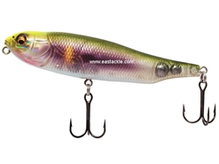 Megabass - Giant Dog-X - GLX SIGNAL PHANTOM AYU - Floating Pencil Bait | Eastackle