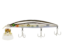 Megabass - Zonk 120 SW - Gataride Hi-Pitch - HT ENSYU KIBINAGO - Floating Minnow | Eastackle