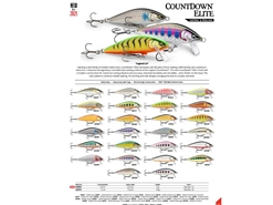 Rapala - Countdown Elite CDE55 - GILDED FIRE TIGER - Sinking Minnow | Eastackle