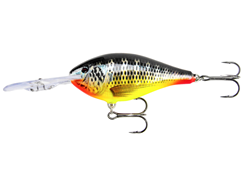 Rapala - Risto Rap 09 - TILAPIA - Floating Crankbait | Eastackle