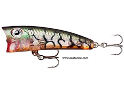 Rapala - Ultra Light Pop ULP04 - GLASS LUCENT TIGER UV - Floating Popper | Eastackle