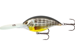 Storm - Arashi Rattling Deep ADP25 - TILAPIA - Floating Crankbait | Eastackle