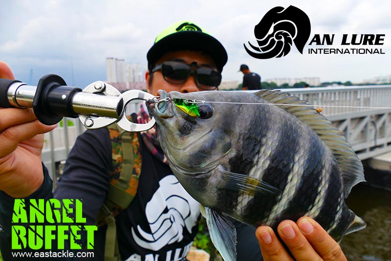 An Lure - Angel Buffet - Pandan Reservoir - Legal Ground - 13 June 2017 | Eastackle