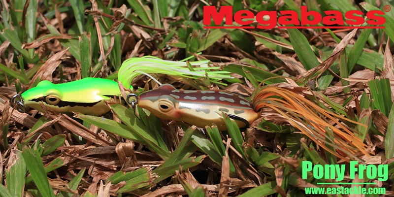 Megabass - Pony Frog - Floating Frog Bait | Eastackle